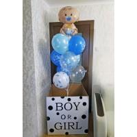 Коробка мальчик или девочка с малышом и шарами