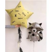 Гелиевый енот и звезда с математическими знаками