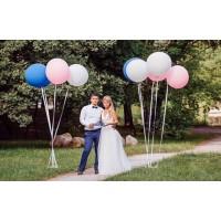 9 больших шаров для свадебной фотосессии